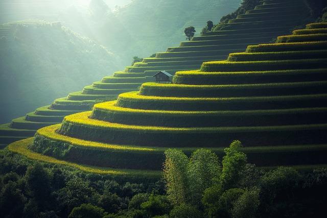 Wietnam - praca i spełnianie marzeń
