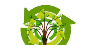 Jakie korzyści nam przynosi recykling